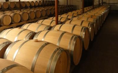 Jaroslavice: na víno do sklepů? Nově i v zimě