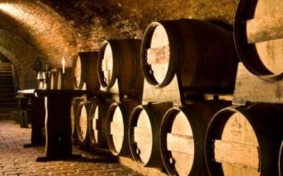 30 otevřených sklepů propojí kyjovské hody a svatomartinská vína v Bzenci