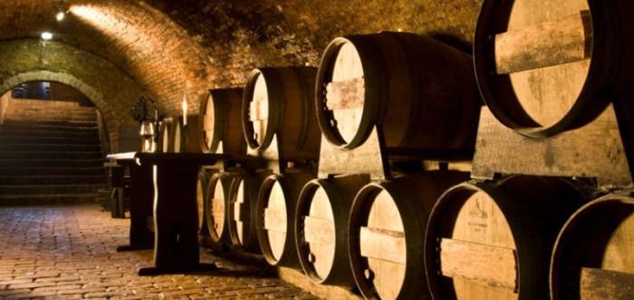 Sklep vinařství Tanzberg