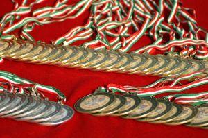 Mundus Vini Biofach: Zlatá medaile pro biovíno z České republiky
