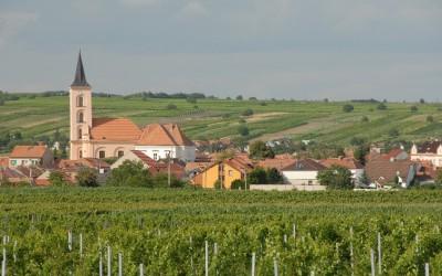 Morava 2015: Pár tipů co pít