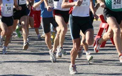 Pardubický Vinařský půlmaraton očekává 1 500 závodníků