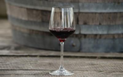 Ve Velkém Týnci se koštovalo víno, k ochutnání bylo na 90 vzorků