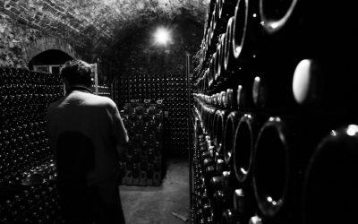 Víno se v období, kdy investoři větří konec růstu akcií, chová jako zlato