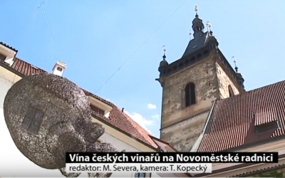 Vína z vinařské oblasti Čechy na Novoměstské radnici v Praze