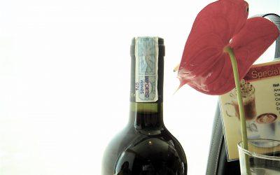 Velké berlínské zlato a dalších 35 medailí pro moravská a česká vína