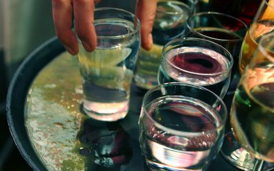 "7. ročník festivalu mladých vín ""Svatomartinské slavnosti a pečená husa"""