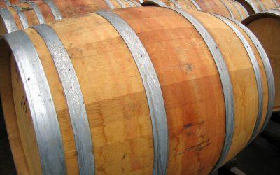 Šampionem Salonu vín je letos Ryzlink vlašský z Klentnice