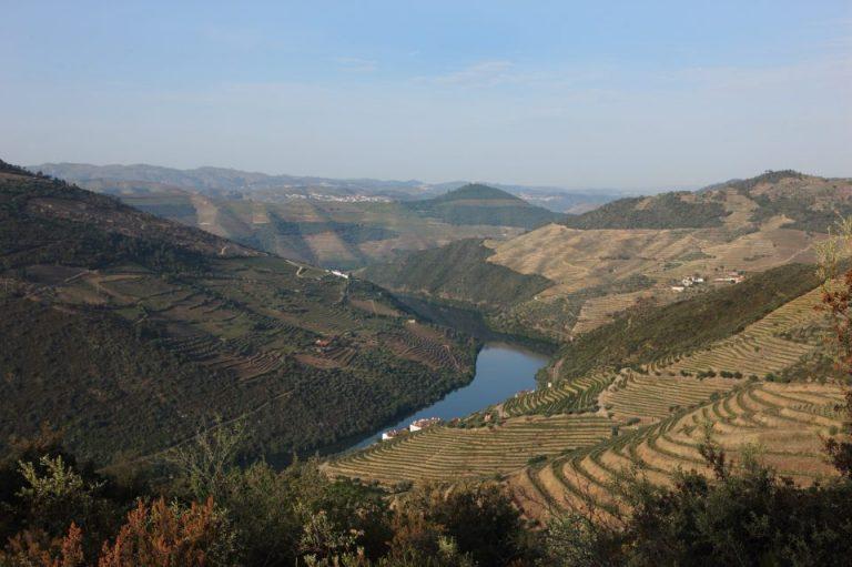 Co je co: Portská a portugalská vína