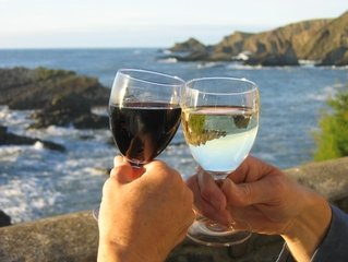 K létu patří sklenka vína. Staňte se jeho znalcem