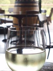 Dobrá vína, která stojí za ochutnání: Rozmanitá vína z modrých hroznů za 86 bodů